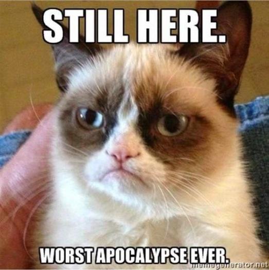 Grumpy Cat Apocalypse