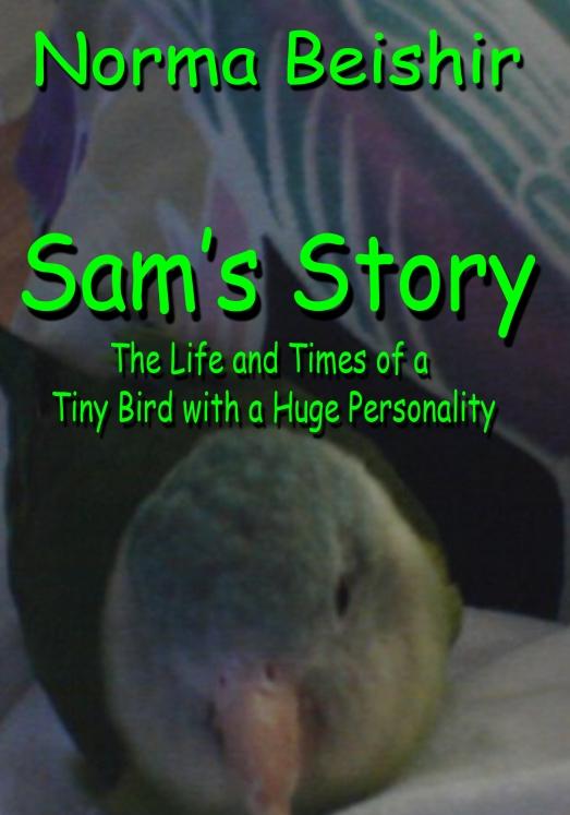 Sams Story